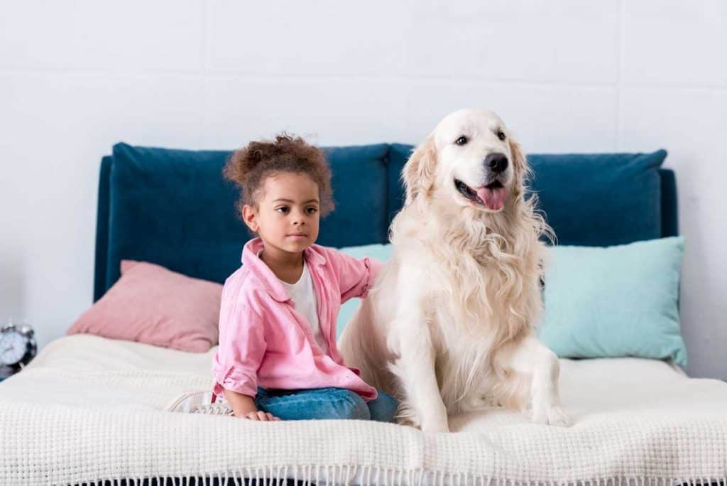 dog in bed with child