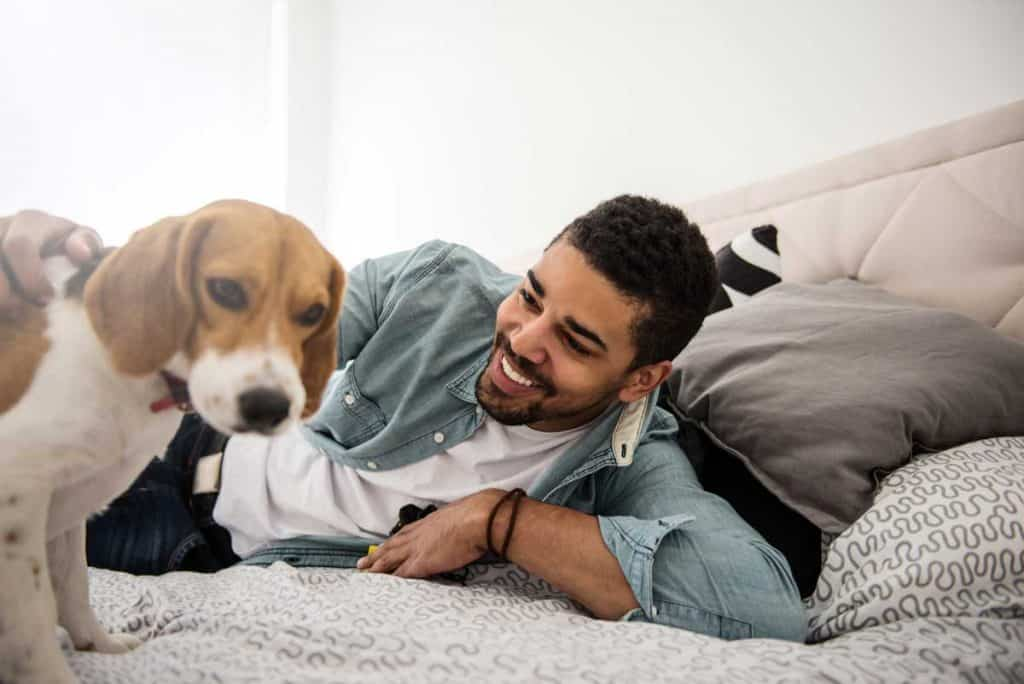 Is sleeping with your dog okay? Here's a dog in bed with man