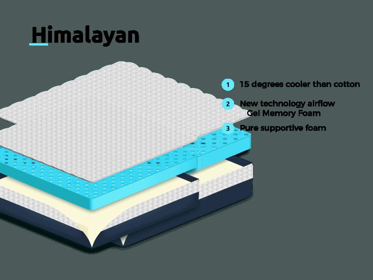 Himalayan-transparent